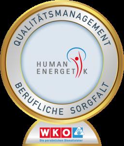 Qualitätsmanagement Berufliche Sorgfalt Persönliche Dienstleiter Energetik